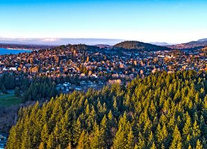Cordata Court | Local photo of Bellingham forest