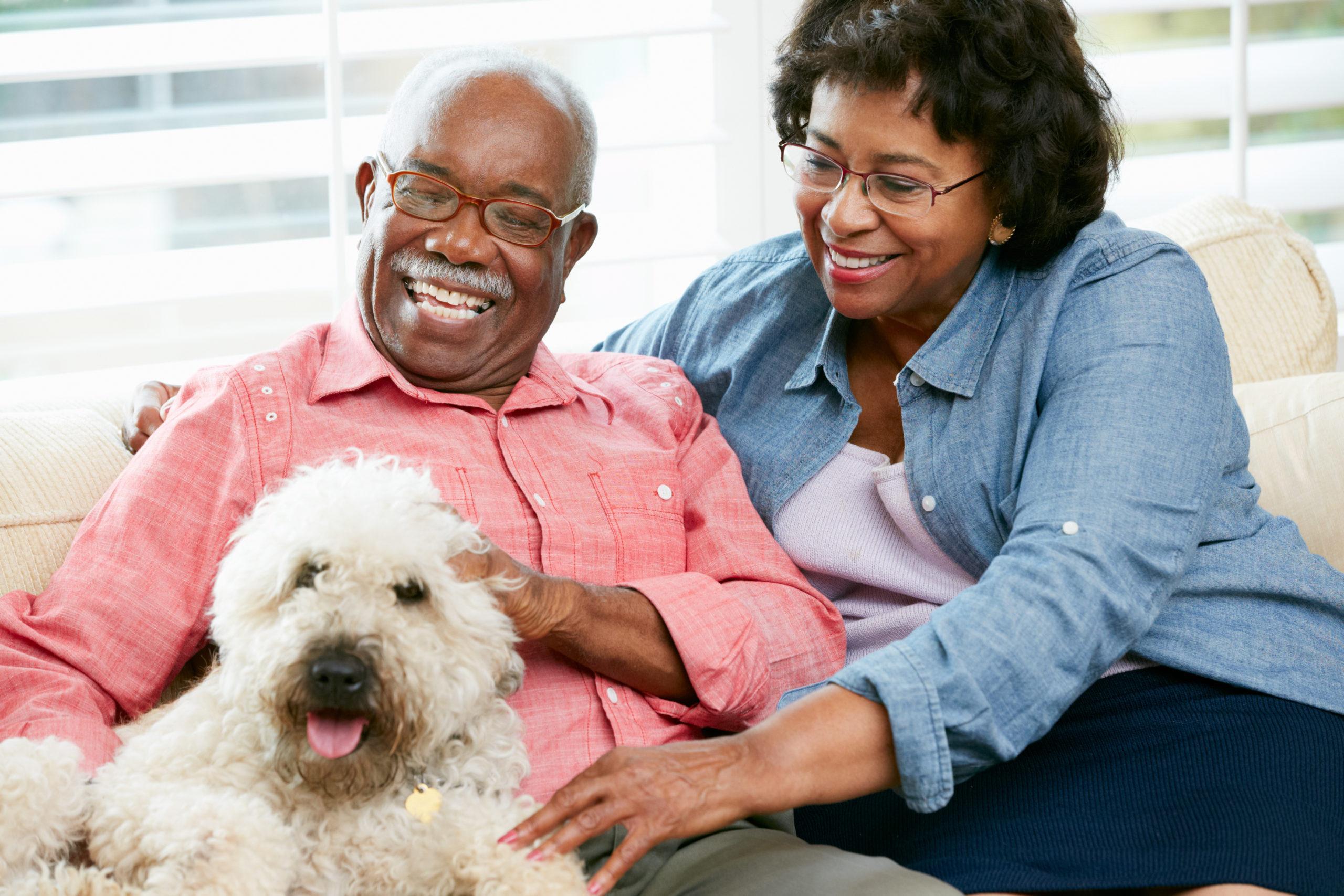 Elk Grove Park   Happy senior couple sitting on sofa with dog
