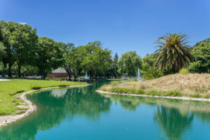 Elk Grove Park | Local Photo of Lake