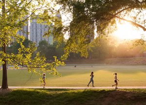 Magnolia Place of Roswell | Local photo of Piedmont Park