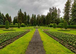South Hill Village | Local gardens