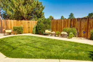 The Chateau at Gardnerville | Yard