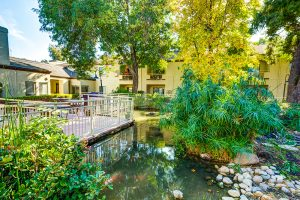 The Oaks at Inglewood | Outdoor Pond