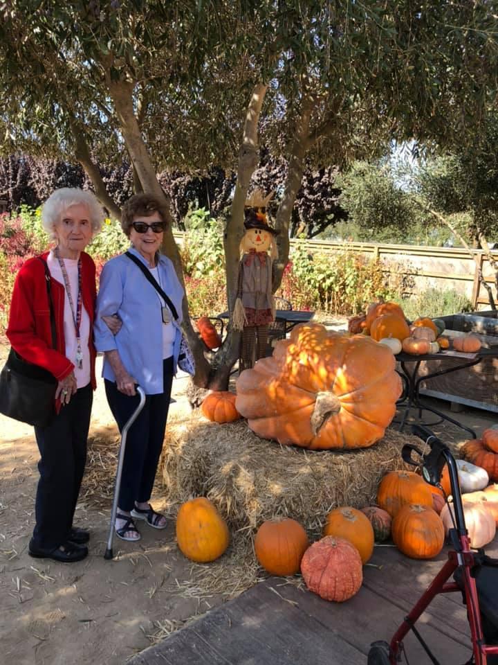 The Oaks at Inglewood | Seasonal outing