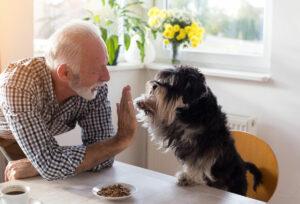 Pegasus Senior Living | Senior man high-fiving dog