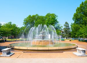 The Renaissance of Florence | Local water fountain