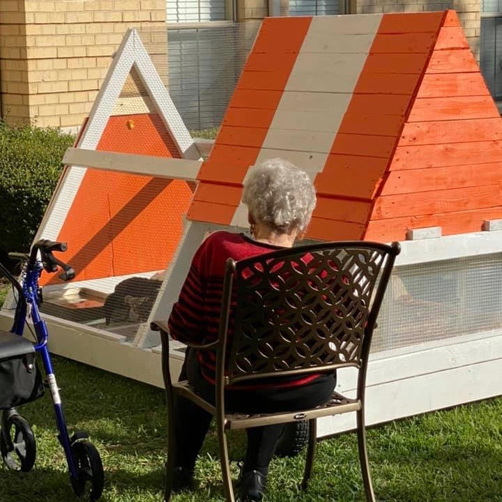 Town Village Crossing   Resident watching finished chicken coop